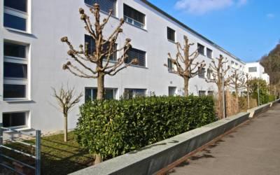 2.5-Zimmerwohnung in Adliswil ZH
